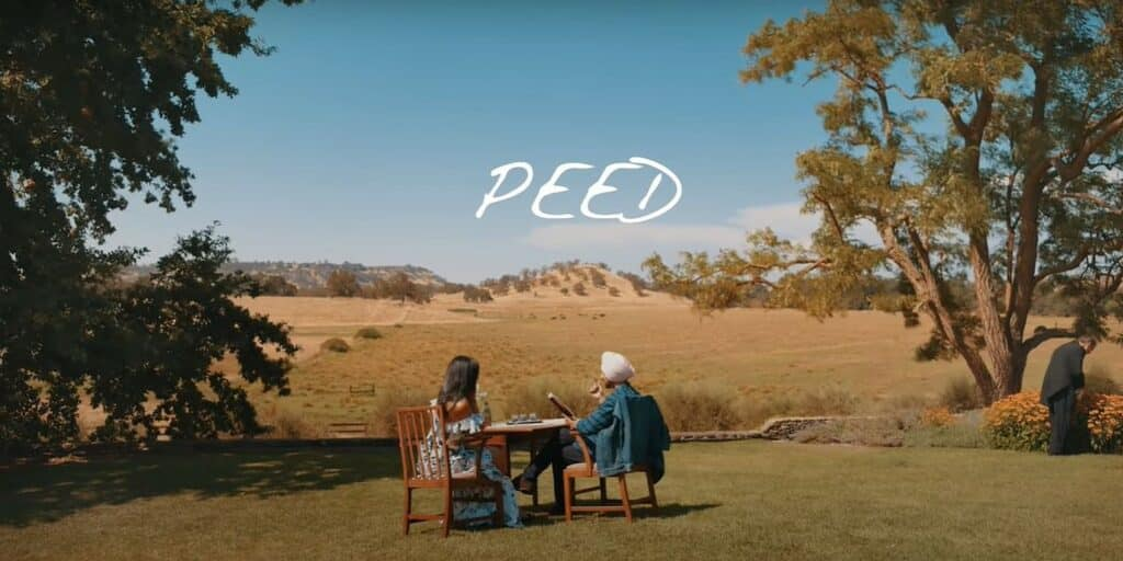 Peed Lyrics In Hindi