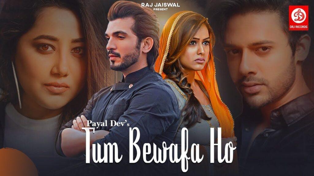 Tum Bewafa Ho Lyrics In Hindi - Payal Dev, Stebin Ben